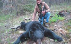 Big 7 foot squared BC Black Bear - Nanikalakeoutfitters.com