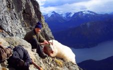BC Goat Hunting Adventures - Nanikalakeoutfitters.com